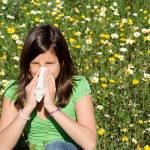 The Hidden Truth About Allergies Revealed